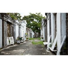 Old Cemetery in New Orleans ❤ liked on Polyvore