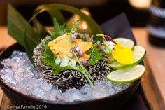 Uni (Sea Urchin) in the shell at Uni Restaurant | Nikkei Cuisine in London | Kavey Eats
