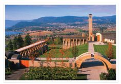 Mission Hill Estate Winery, Kelowna, BC Fabulous views of Okanagan Lake. Things To Do In Kelowna, Wonderful Places, Beautiful Places, West Coast Canada, Sonora Desert, Vancouver City, True North, Quebec City, Wine Time