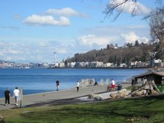 view from West Seattle's Alki Beach (by Candace Brown)