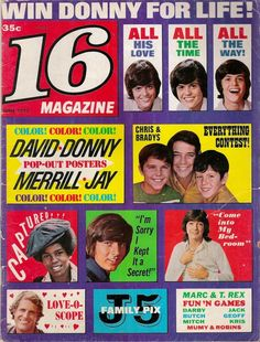 Always had fold-out posters of the teen idols inside!