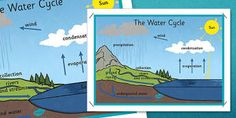 The Water Cycle Large Display Poster - water cycle, display poster, display Ks2 Classroom, Classroom Walls, Classroom Displays, About Water Cycle, All About Water, Importance Of Water, Poster Display, Reading Comprehension Activities, Primary Resources