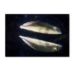 Yale Gurney 'Fish-Fish' Canvas Art