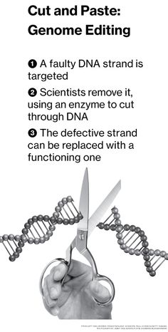 Crispr Gene-Editing Method Could Lead to Cures, Ethical Risks - Bloomberg Business