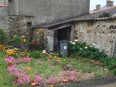 Quaint wild French garden