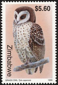 African Grass Owl stamps - mainly images - gallery format