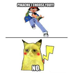 Picachu grumpy cat :)