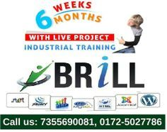 There is so many organization in Mohali which gives #industrial_training. But Brillcareer is one of the #best_PHP_and_web_designing_company_in_Mohali, which provide six weeks industrial training. We are specialized to boost your skills and gain your knowledge.