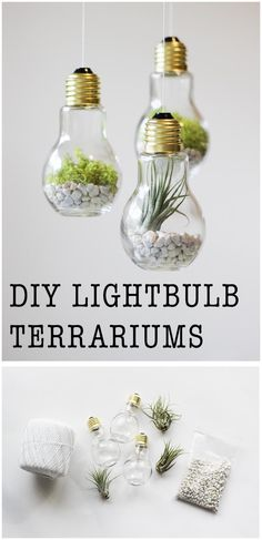 DIY Lightbulb Terrariums | 17 Easy DIY Home Decor Craft Projects
