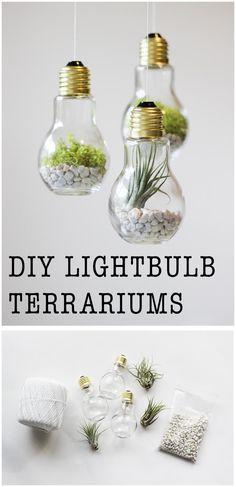 DIY Lightbulb Terrariums | Easy DIY Home Decor Craft Projects