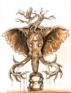 Elephant And Owl Drawing Tattoo Httpwww