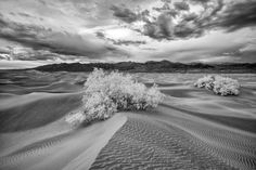 Death Valley Infrared (3)