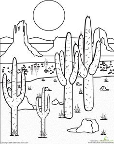 sketches to copy | Draw landscapes of cacti in a desert ...
