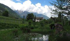 Home      ReiseNotizen      Veggiewelt      WeltVerbesserung      FaireRessourcen      My Posts in English South Tyrol, Mountains, Nature, Travel, World, Viajes, Naturaleza, Destinations, Traveling