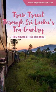 Yogawinetravel.com: Train Travel Through Sri Lanka's Tea Country - From Nuwara Eliya to Kandy