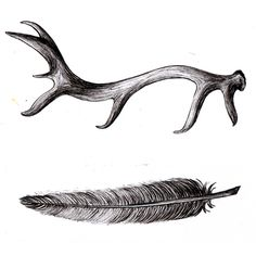 Antler and feather.