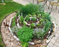 Follow Anne at The Micro Gardener's 4 Step Guide to Building a Herb Spiral, and all your herb gardening will turn, turn, turn. This compact design will add architectural interest to any garden setting. || @microgardener