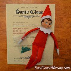 Magic Elf Seeds... best Elf on the Shelf idea ever. So cute!