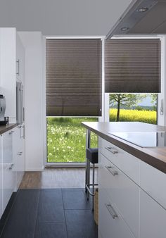 Plissees pleated blinds on Pinterest