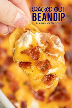 Cracked Out Bean Dip - SO addictive! Bean dip loaded with cheddar bacon and ranch. I could NOT stop eating this yummy dip. The flavors are amazing! Refried beans, taco seasoning, sour cream, ranch, bacon and cheddar cheese. Can make ahead of time and refr Bean Dip Recipes, Recipes With Refried Beans, Refried Bean Recipe Canned, Hamburger Recipes, Potato Recipes, Easy Recipes, Ranch Bean Dip, Refried Bean Dip, Sour Cream Dip