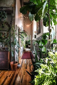 Un appartement jungle - PLANETE DECO a homes worldYou can find Bohemian homes and more on our website.Un appartement jungle - PLANETE DECO a homes world Deco Jungle, Jungle Jungle, Jungle House, Jungle Room, Appartement Design, Deco Boheme, Cute Dorm Rooms, Large Plants, Green Plants