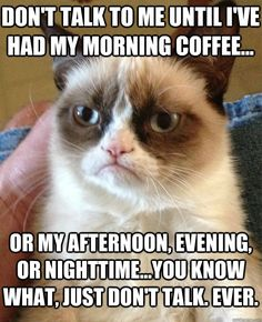 #GrumpyCat #meme Grumpy Cat™ stuff, gifts, coupons, quotes, meme on www.pinterest.com/erikakaisersot