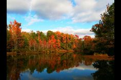 East Texas Fall Foliage taken by me