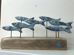 Sept Sardines une Swiming