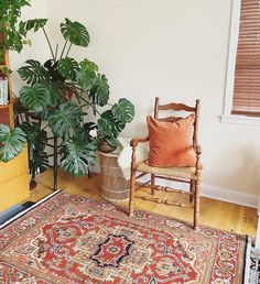 What is Swedish death cleaning? – cozy home warm Orange Sofa, Orange Pillows, Blue Throw Pillows, Lime Green Walls, Orange Walls, Cozy Living Spaces, Living Room, Clutter Free Home, Sparks Joy