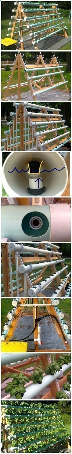 Aquaponics System - How To Grow 168 Plants In A 6 X 10 Space With A DIY A-Frame Hydroponic System Break-Through Organic Gardening Secret Grows You Up To 10 Times The Plants, In Half The Time, With Healthier Plants, While the Fish Do All the Work... And Yet... Your Plants Grow Abundantly, Taste Amazing, and Are Extremely Healthy #hydroponicgardenhowto #hydroponicgardens #hydroponicgardening