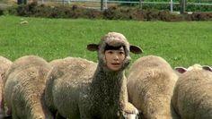 Rino Sashihara:  If you ask me, Sashi cannot take a BAAAAD photo    : )