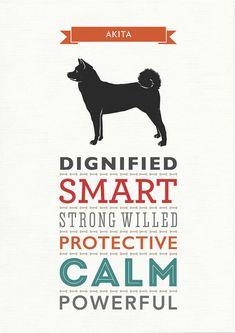 Akita Dog Breed Traits Print by WellBredDesign on Etsy