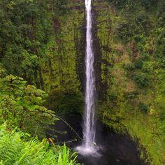 Akaka Falls state park near Hilo, Hawaii