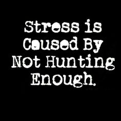 How To Get Better, Hunting Season, Animal Games, Bow Hunting, Get Well, Stress, Pink Bows, Hunters, Arrow