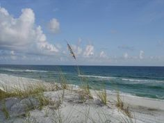 One of the beautiful beaches of South Walton County in Florida