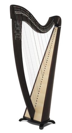 Korrigan model from Camac harps...another instrument that I found simply amazing!