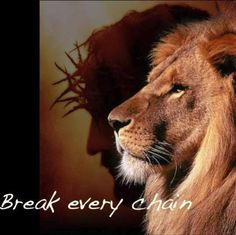 There is Power in the Name of Jesus to Break Every Chain! Lion Images, Lion Pictures, Jesus Pictures, Jesus Wallpaper, Lion Wallpaper, Jesus Christ Images, Jesus Art, Lion Of Judah Jesus, Break Every Chain
