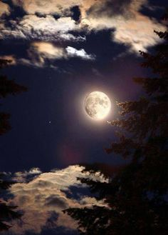 Beautiful moonlight scene...