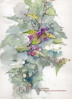 vini【水彩】本日もスケッチびより!-倾心水彩,倾心植物。 Art Aquarelle, Watercolors, Florals, Berries, Mixed Media, Painting, Collection, Watercolor Paintings, Floral