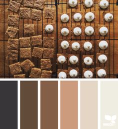 Search Design Seeds inspiration by color. Fall Color Palette, Colour Pallette, Colour Schemes, Color Combos, Color Patterns, Color Tones, Trends 2016, Color Palette Challenge, Design Seeds
