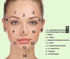 If our eyes are the mirrors of our soul then our skin is the mirror of our health. According to Traditional Chinese Medicine and Ayurveda what shows up … Continue reading → Gesicht Mapping, Moles On Face, Face Mapping, Acne Causes, Body Organs, Traditional Chinese Medicine, How To Get Rid Of Acne, Jawline, Learn To Read