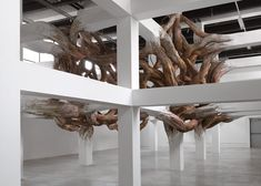 Baitogogo by Henrique Oliveira at Palais de Tokyo - A twisted entanglement of tree branches appears to grow organically from the beams of Paris' Palais de Tokyo museum in this installation.