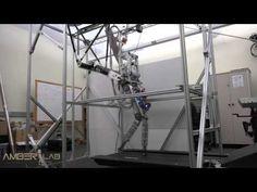 Bipedal Robotic Running on DURUS-2D - YouTube