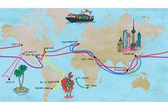 Travel the World on Cargo Cruises