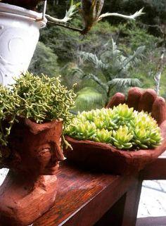 As suculentas ganham mais destaque em vasos de barro