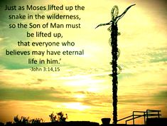 John 3:14-15 Titus 2 11, One Thousand Gifts, King Jesus, Jesus Resurrection, The Son Of Man, John 3, Daily Devotional, Spiritual Quotes, Wilderness