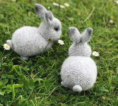 Cuclandia: Rabbit Crochet Animals, Crochet Toys, Knitted Bunnies, Knitting Patterns, Crochet Patterns, Crochet Rabbit, Stuffed Toys Patterns, Doll Toys, Doll Clothes