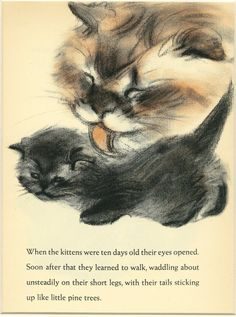 Vintage Cat Print Calico Cat by Clare Turlay Newberry c.1937