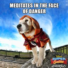 Meditates in the face of danger.