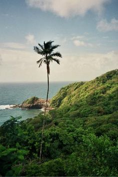 Beau Rive hotel, Dominica